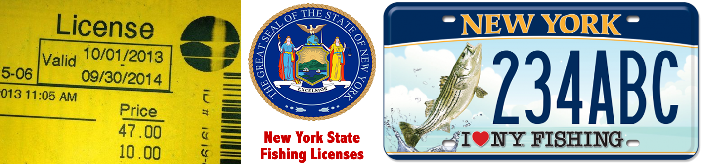 Purchase New York State Fishing Licenses